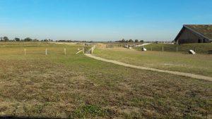 Drenthe wandelfestijn